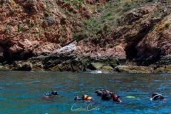 Berlengas - Mergulhadores