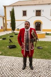 Falcoaria Real em Slavaterra de Magos