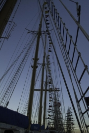 The Tall Ships Race