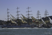 The Tall Ships Race - A Despedida