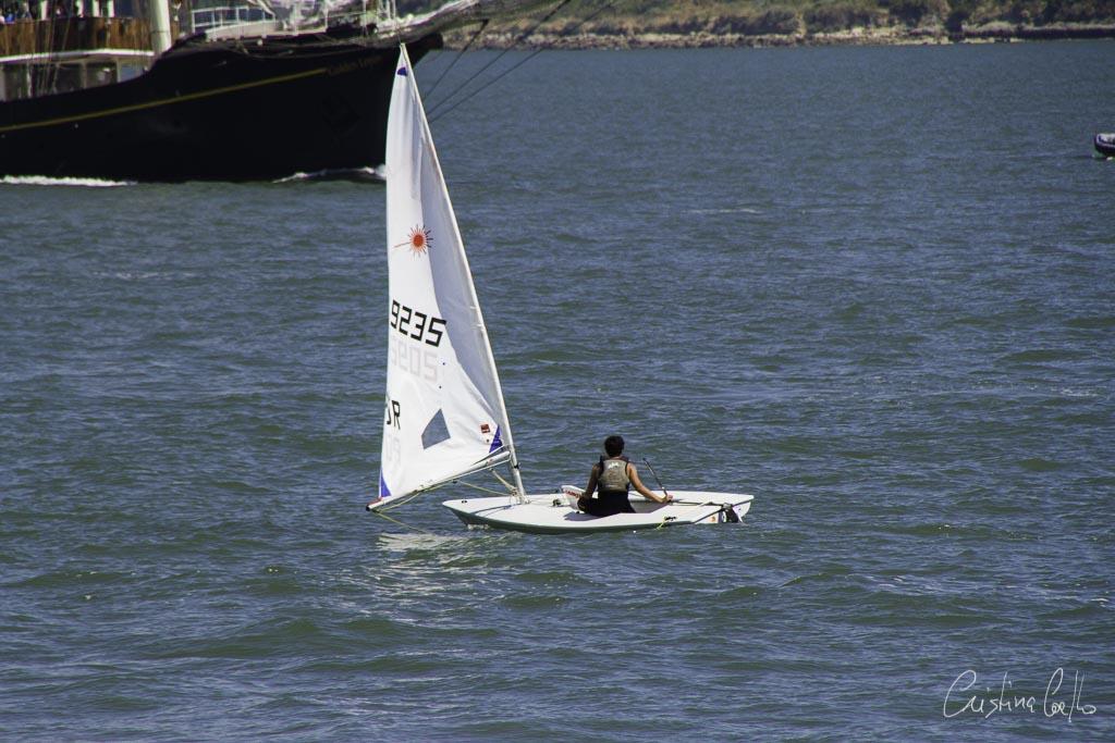 The Tall Ships Race - A Despedida